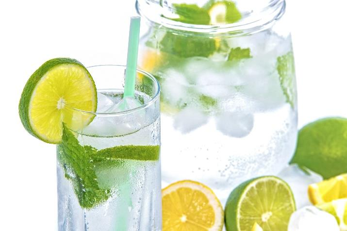 Tasty and beautiful Pre-Meal Water Ideas