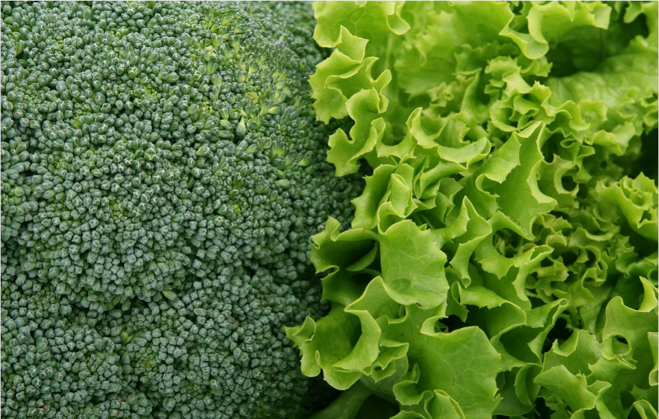 broccoli and kale superfoods